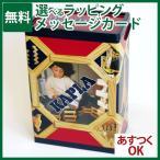 積み木 小冊子のおまけ付 積み木 ブロック KAPLA カプラ200