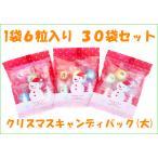 クリスマスキャンディパック 1袋6個入り×30袋セット 送料無料 子供様用 手作り お菓子