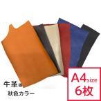 革はぎれ 約A4サイズ×6枚 秋色ハギレセット(大) ハンドメイド レザークラフト