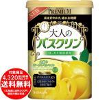 大人のBCピールレモン