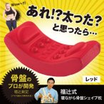 【ポイント最大29倍】福辻式 寝ながら骨盤シェイプ枕【正規品】