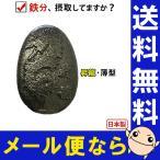 南部鉄器 ザ・鉄玉子 薄型 昇龍 K-34 ヘム鉄 鉄分補給 鉄たまご 鉄卵