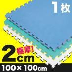 《1枚》リバーシブルジョイントマット2.0 ボディメーカー 100×100×2cm(格闘技/柔道/レスリング/空手/マット) メーカー直送