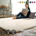 送料無料 ラグ ラグマット カーペット 絨毯 正方形 EXマイクロラグ 200×200cm(約2畳) マイクロファイバー おしゃれ 洗える 滑り止め 北欧 MS300 メーカー直送