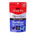 UHA味覚糖 グミサプリ ブルーベリー 20日分 40粒※軽減税率対象
