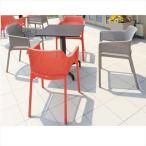 タカショー ピアニ/ネット テーブルチェア5点セット 『ガーデンチェア ガーデンテーブル セット』