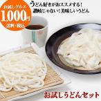 うどん 桐生うどん 130g×2袋 + ひもかわうどん(並麺)(乾麺)2袋セット つゆ4袋 ポイント消化 ゆうパケット 送料無料