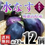 訳あり 水なす 和歌山県産 12個入り 約2.5kg 送...