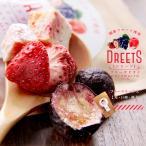 DREETS ドリーツフリーズドライ13g ドライフルーツミックス国産フルーツ使用 苺(イチゴ) 巨峰(キョホウ) 桃(モモ)乾燥果実の詰め合わせです【メール便対応】