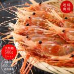 天然ボタンエビ500g Lサイズ(ぼたんえび)刺身で食べれる牡丹海老 高級食材のボタン海老です 濃厚な甘さとプリップリッの食感(牡丹エビ)