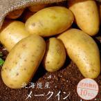 メークイン10kg(北海道産)メイクイン メークイーン(厚沢部町発祥)煮崩れしないじゃがいも(肉じゃが)ジャガイモ 送料無料※9月中旬頃より収穫次第順次発送