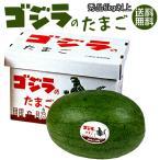 ゴジラのたまご 秀品 6kg以上×1玉 (月形町特産楕円形スイカ) 北海道産すいか 網皮西瓜 送料無料