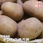 インカのめざめ まとめ買い 10kg (サイズ無選別) 栗の様な甘いじゃがいも インカの目覚め  北海道産越冬ジャガイモ