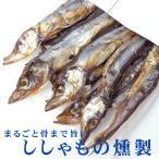ししゃもの燻製 38g (旨みがギュッと凝縮されたシシャモのクンセイ 珍味)まるごと骨まで旨い柳葉魚のくんせい