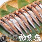 本ししゃもメス30尾(北海道産本柳葉魚)卵を抱えた雌の子持ちシシャモ 北海道の特産種の本シシャモ(簡単調理)海鮮ギフト 御中元や御歳暮等贈り物にも