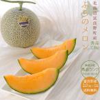 ふらのメロン 秀品 (2kg×1玉) 北海道富良野メロン 贈答用(御中元)にも最適 北の国からの富良野めろん 送料無料