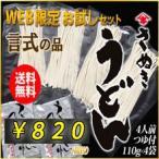 さぬきうどん 半生 110g(1人前)×4 つゆ付 WEB限定 お試しセット 言式KOTOSHIKI