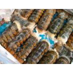 〔送料無料〕〔お買い得・業務用大量〕生冷凍オマールエビ(ロブスター)4.5kg(50〜60尾前後)〔E〕北港直販☆えび・海老☆