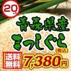29年度 青森県産まっしぐら30kg 送料無料