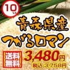 27年度 青森県産つがるロマン10kg 送料無料