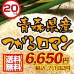 27年度 青森県産つがるロマン20kg 送料無料