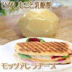 ひがしもこと乳酪館 モッツァレラ熟成タイプ チーズ