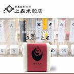 北海道米 お米 旭川産 きゅーと米 焼肉用北海道ブレンド 白米 300g(二合)