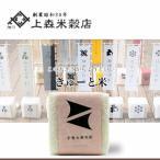 北海道米 お米 旭川産 きゅーと米 手巻き寿司用北海道ブレンド米 白米 300g(二合)