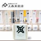 北海道米 お米 ゆめぴりか 旭川産 きゅーと米 白米 300g(二合)