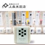 北海道米 お米  ななつぼし 旭川産 きゅーと米 白米 300g(二合)