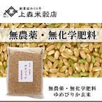北海道米 無農薬・無化学肥料 美味しいお米 ゆめぴりか 玄米 1kg   真空パック対応
