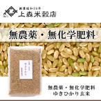 合鴨農法米ゆきひかり 玄米 1kg 北海道産 農薬・化学肥料不使用  真空パック対応