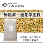 北海道産 無農薬ゆめぴりか 玄米5kg