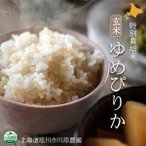 北海道産米 ゆめぴりか玄米 特別栽培米 10kg 北海道旭川市の川添農園より直送の安心・安全な特別栽培米ゆめぴりか玄米