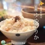 北海道産米 ゆめぴりか玄米 農薬節減米 10kg 北海道旭川市の川添農園より直送の安心・安全な農薬節減米 ゆめぴりか玄米