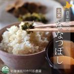 北海道産米 ななつぼし玄米 農薬節減米 10kg 北海道旭川市の川添農園より直送の安心・安全な農薬節減米 ななつぼし玄米