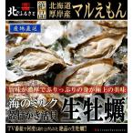 北海道 厚岸産 マルえもん 生 牡蠣 殻付き 3Lサイズ 50個 カキナイフ 軍手 付 産地直送 150g以上/個 カキ かき 生牡蠣 生食 3lサイズ 母の日 ギフト プレゼント