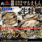 北海道厚岸産 殻付き 生牡蠣 ガンガン焼セット LLサイズ×20個 カキナイフ・軍手付【産地直送】(120〜150g未満/個) カキ かき