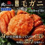 北海道根室産 毛蟹 約500g×2尾 (急速冷凍)【産地直送】(毛がに 毛ガニ かに カニ)