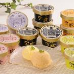 ショッピングアイスクリーム 北海道乳蔵アイスクリーム(プレミアムバニラ入) 送料無料