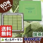 ロイズ ROYCE 生チョコレート (抹茶) 60箱入1ケース ロイズの正規取扱店舗(dk-2 dk-3)