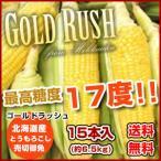 R3年度とうもろこし「ゴールドラッシュ」 15本セット(約6.5kg )    産地直送 着日指定・同梱不可 8月10日頃から佐川便で発送開始予定