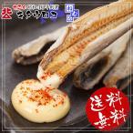 北海道根室産 生干し「氷下魚(コマイ)」 1kg ※30尾前後入