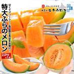 メロン ふらのメロン 大玉 2kg×1玉入 共選 秀品 お中元 ギフト 野菜 フルーツ