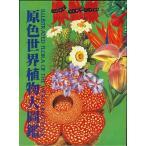 原色世界植物大図鑑/バーゲンブック