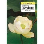 生きている古代植物-カラー自然ガイド18/クーポンあり/バーゲンブック/3240円以上購入送料無