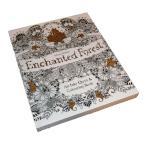 Enchanted Forest ぬりえ カード ねむれる森 夢いっぱいのぬりえ 塗り絵 英語 30枚 30 Postcards 142mm×172mm