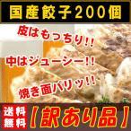 ショッピングギョーザ 餃子 肉餃子 冷凍 食品 お取り寄せ レトルト 国産 40人前 200個
