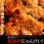 焼き鳥 焼鳥 冷凍 バーベキュー 20本 セット 純鶏 福井 鶏肉 モモ肉 〔A冷凍〕