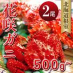 花咲ガニ500g-580g×2尾 ボイルM 北海道根室産直 花咲蟹